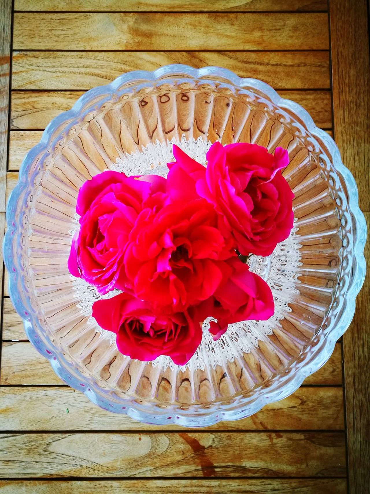 Red Flower Wood - Material Table Petal No People Rose - Flower Freshness Flower Head Fragility Nature Paradise My Favorite Place Myparadise
