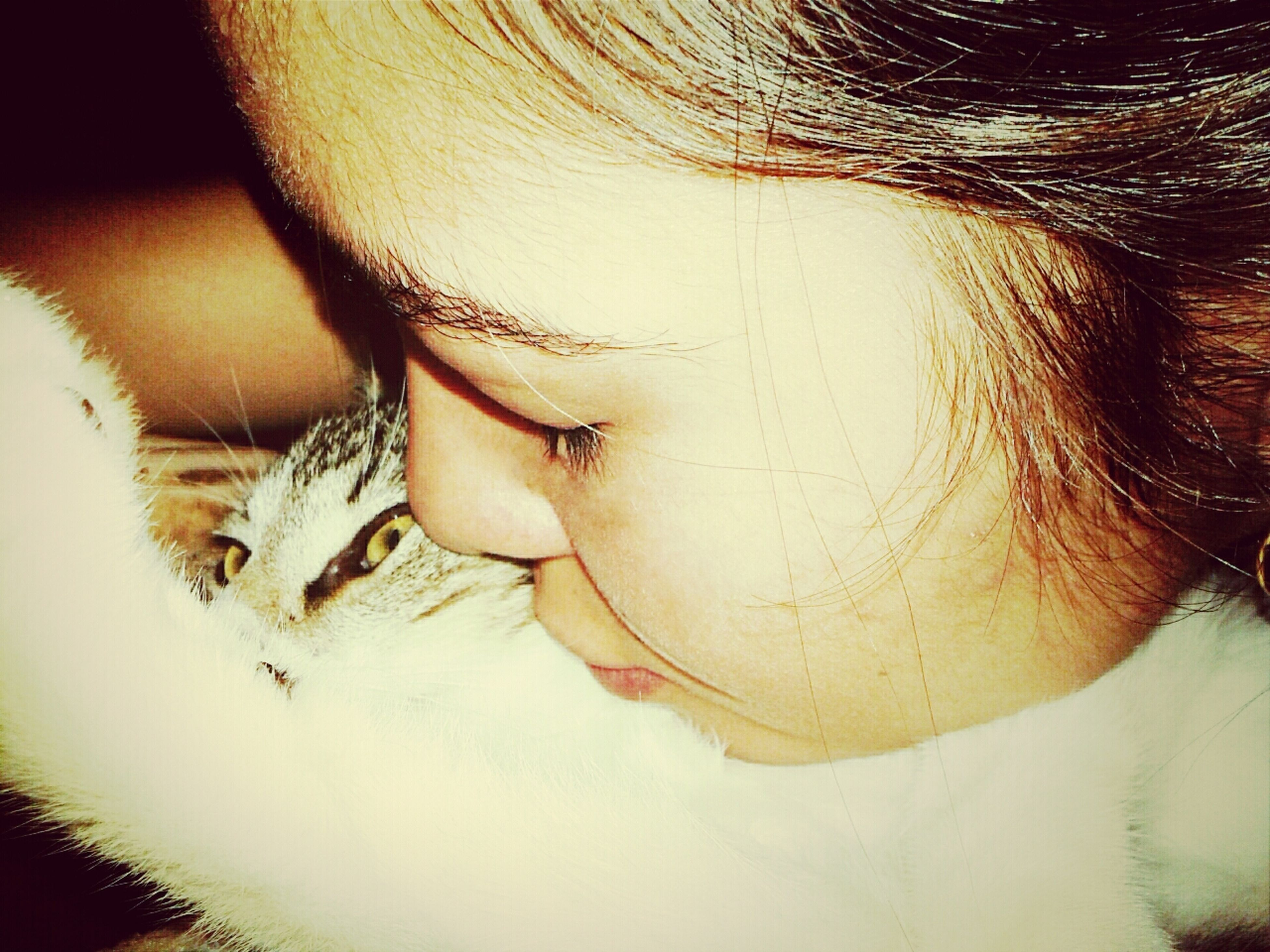 Cat Kitty VSCO Cam Me And Bruce