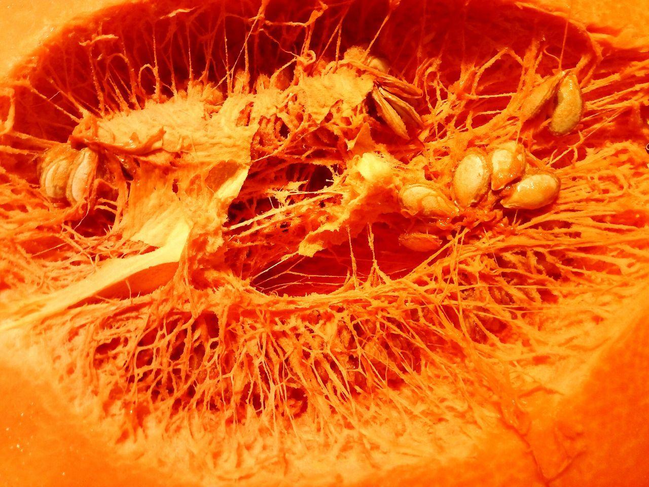 Pumpkin Nature Marketplace Close-up Fresh No People Early Morning Day Freshness Freshfruits Inside Things