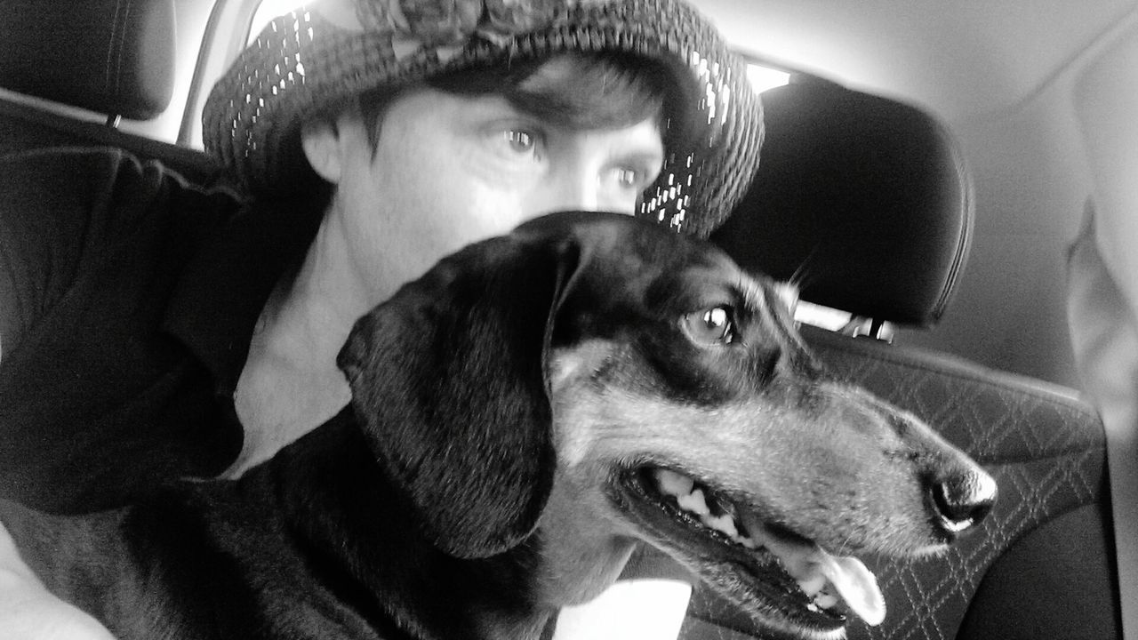 Hello World ❤ Abagail <3 Weekend ♥ Dog❤ Doxie Moxie Black And White Photography Summer ☀ abagail & I.... Summer 2016
