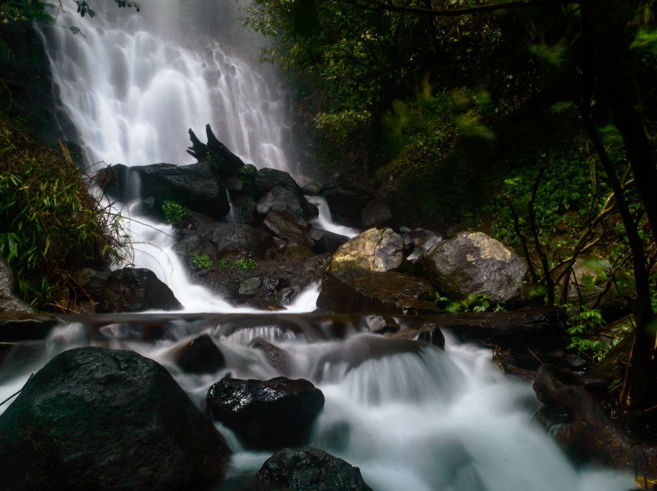 Cilember Waterfall 3th Beauty In Nature Blurred Motion Day Falls Flowing Water Forest INDONESIA Jakarta Long Exposure Motion Nature No People Outdoors Power In Nature Rapid River Rock - Object Scenics Tranquil Scene Tranquility Tree Tropical Tropical Climate Water Waterfall