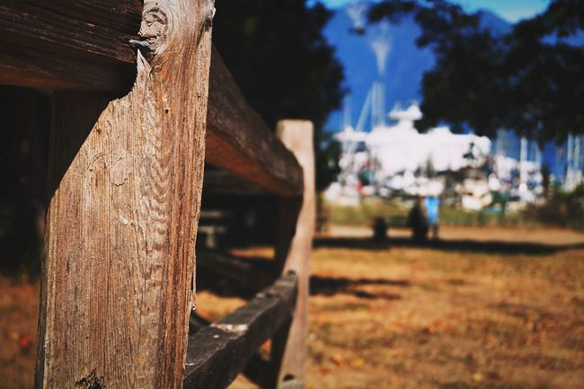 On The Fence Fence Bowen Island British Columbia Vancouver Summer Park Afternoon Sunny Day Warm