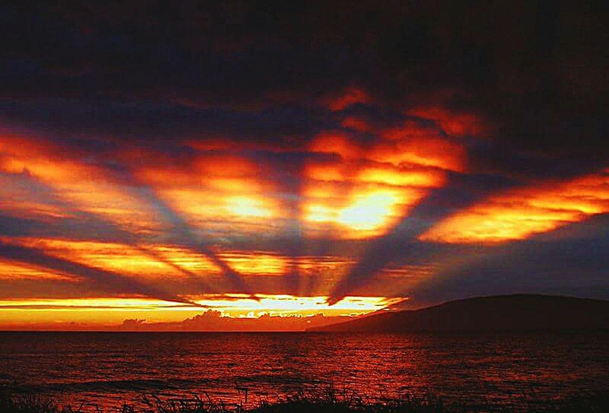 Cloud - Sky Dramatic Sky No People Horizon Over Water Outdoors Sky Whatthefuckaretheyspraying Chemtrails Chemical Sky GeoEngineering Grid Pattern Sunset Chemical Sunset Aerosols