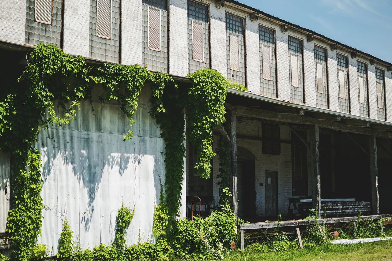 Old Buildings Abandoned Buildings Western North Carolina North Carolina Outdoors Kudzu Photography