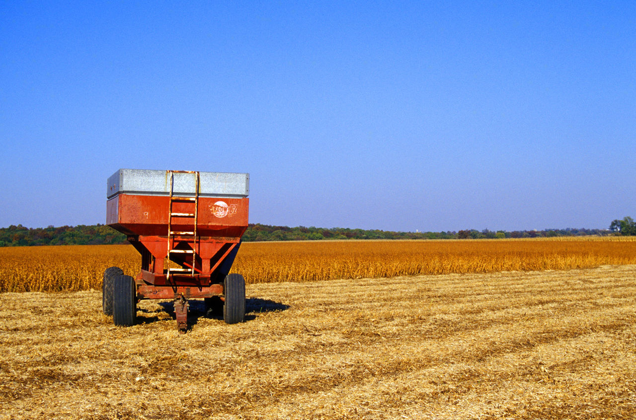 Beautiful stock photos of farm, Agriculture, Beauty In Nature, Blue, Container