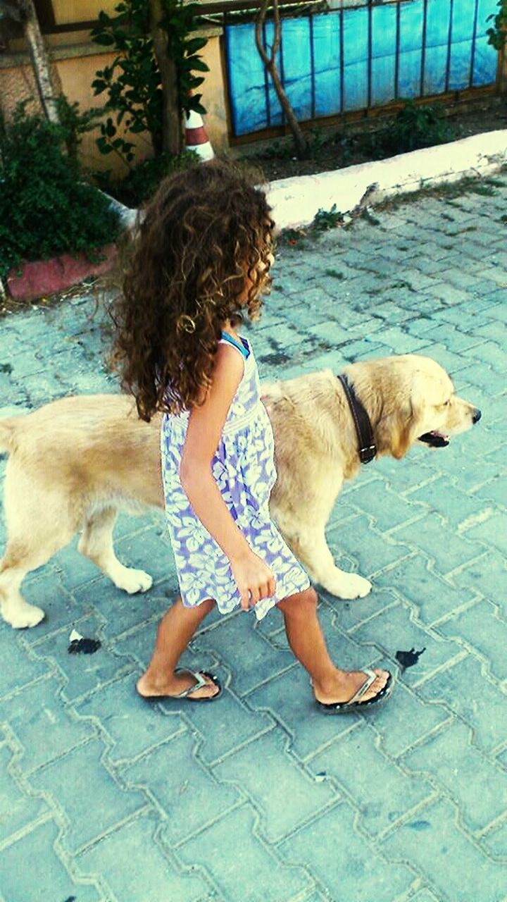 dog, pets, one animal, domestic animals, animal themes, mammal, one person, real people, day, outdoors, standing, young adult, water, friendship, people