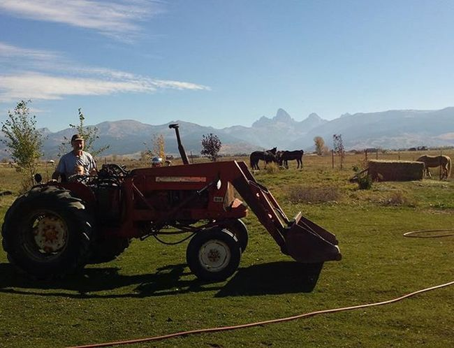 Tractor rides & cool fall mornings. Zevincarlos Cowboy Tractor Papasboy Tetons Tetonvalley Idahome Idahogram Onlyinidaho Farmboys CountryLivinG Nofilter Nofilterneeded Horses Morgans Thelittlestcowboy Zed