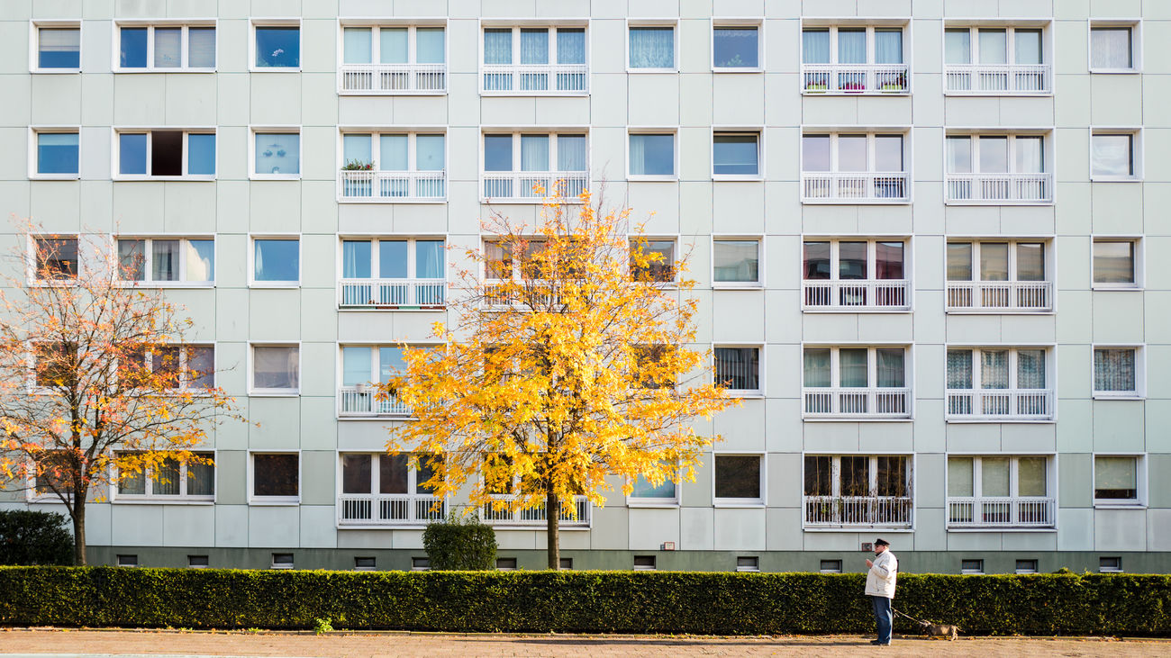 the tree and the facade Architecture Autumn Colors Berliner Ansichten Built Structure Fassade Gegensätze Socialismmodernism Streetphotography Tree Windowns