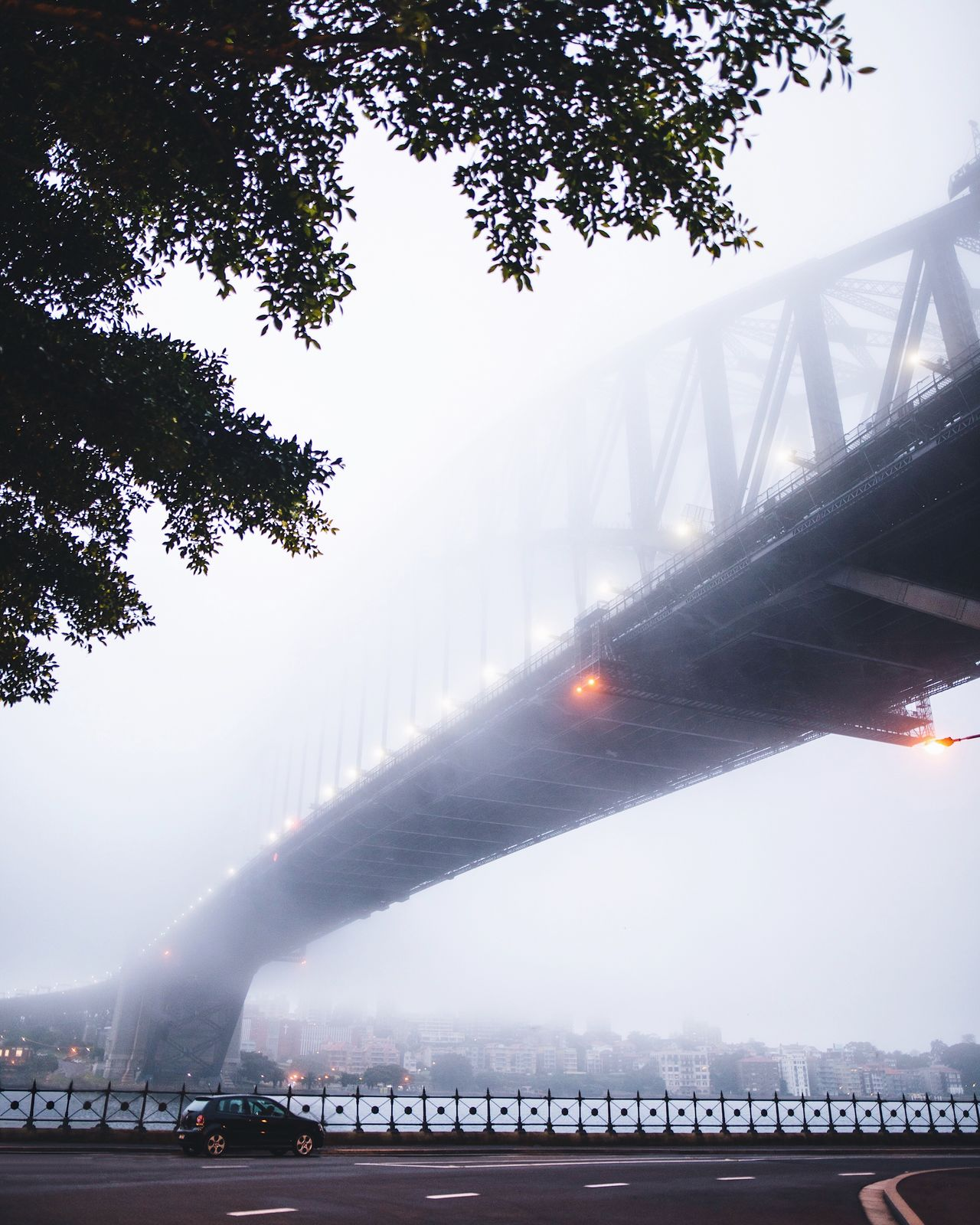 The Architect - 2017 EyeEm Awards @itchban / www.itchban.com Tree Bridge - Man Made Structure Sky Architecture Outdoors Built Structure Day Fog Low Angle View Nature Travel Destinations Mountain No People