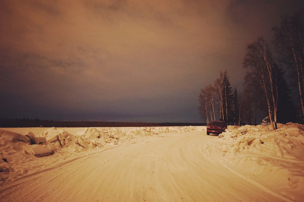 Hunting for the lights // Tree Cold Temperature Winter Snow Nature Beauty In Nature Sky Scenics No People Tranquility Tranquil Scene Landscape Bare Tree Sunset Outdoors Day