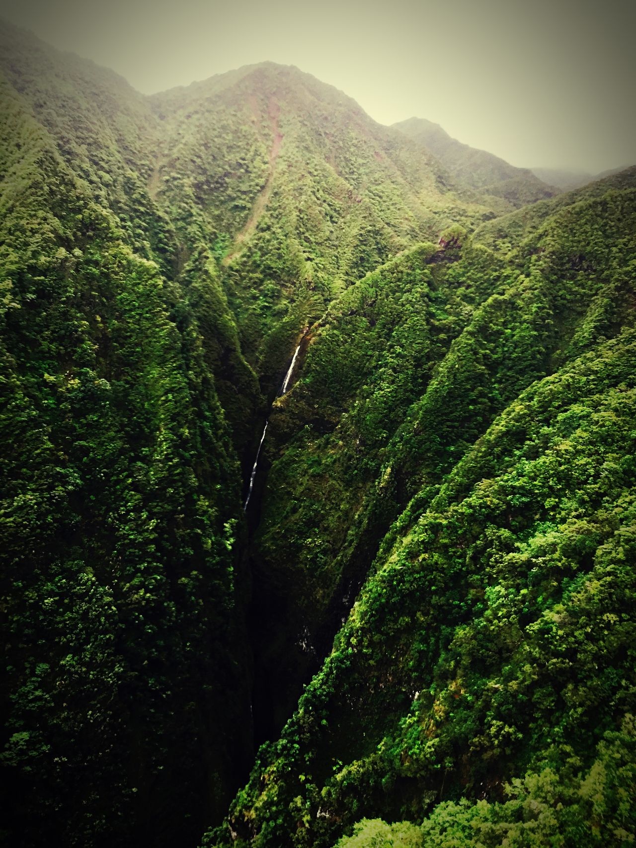 Beautiful stock photos of hawaii, Beauty In Nature, Day, Green, High Angle View