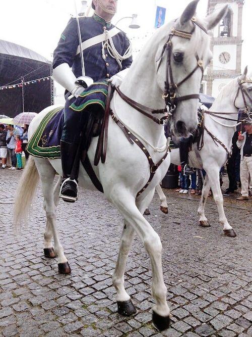 Póvoa De Varzim A Ver O Mar Portugal été2014 Procession