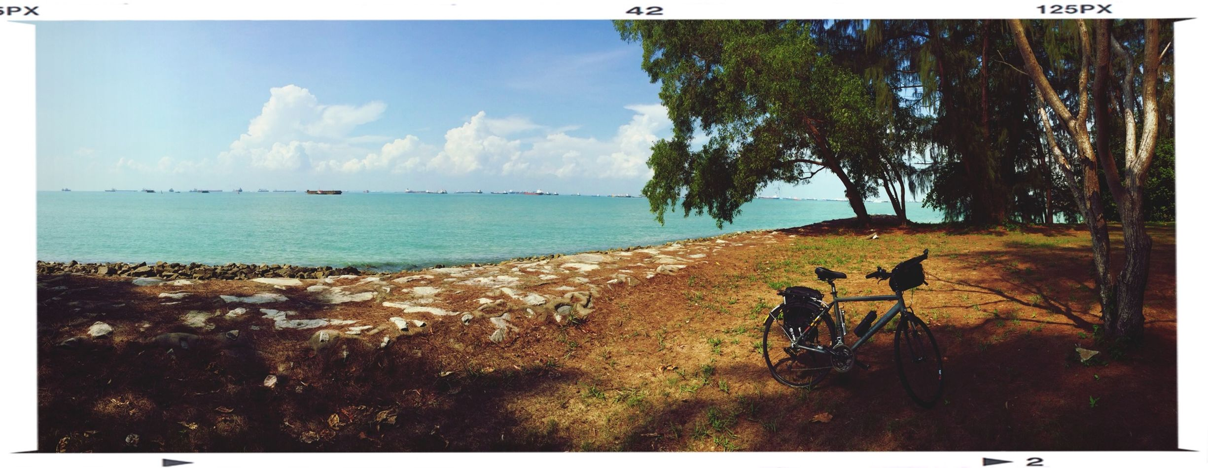 Cycling day.