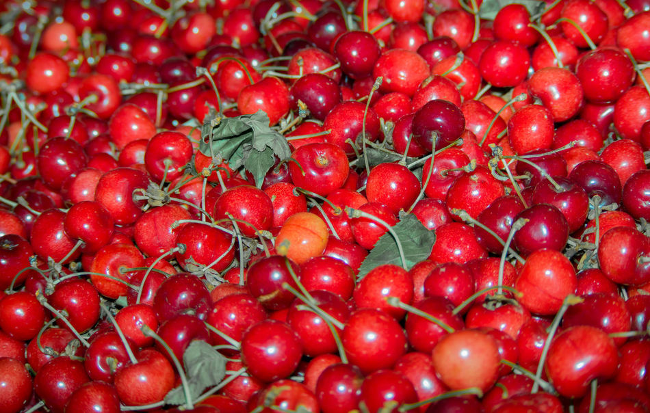 Backgrounds Cherry Close-up Day Food Food And Drink Freshness Fruit Fruits Full Frame Goods Healthy Eating Many Pieces Marketplace Nature No People Pieces Plenty Of Food Red Red Color Sour Cherry Wallpaper Wallpaper Design Wealthy