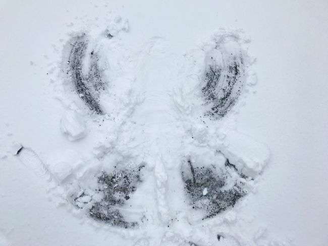 Childhood Snow Angel Winter Cold Temperature Snow High Angle View No People Weather Close-up Nature Beauty In Nature