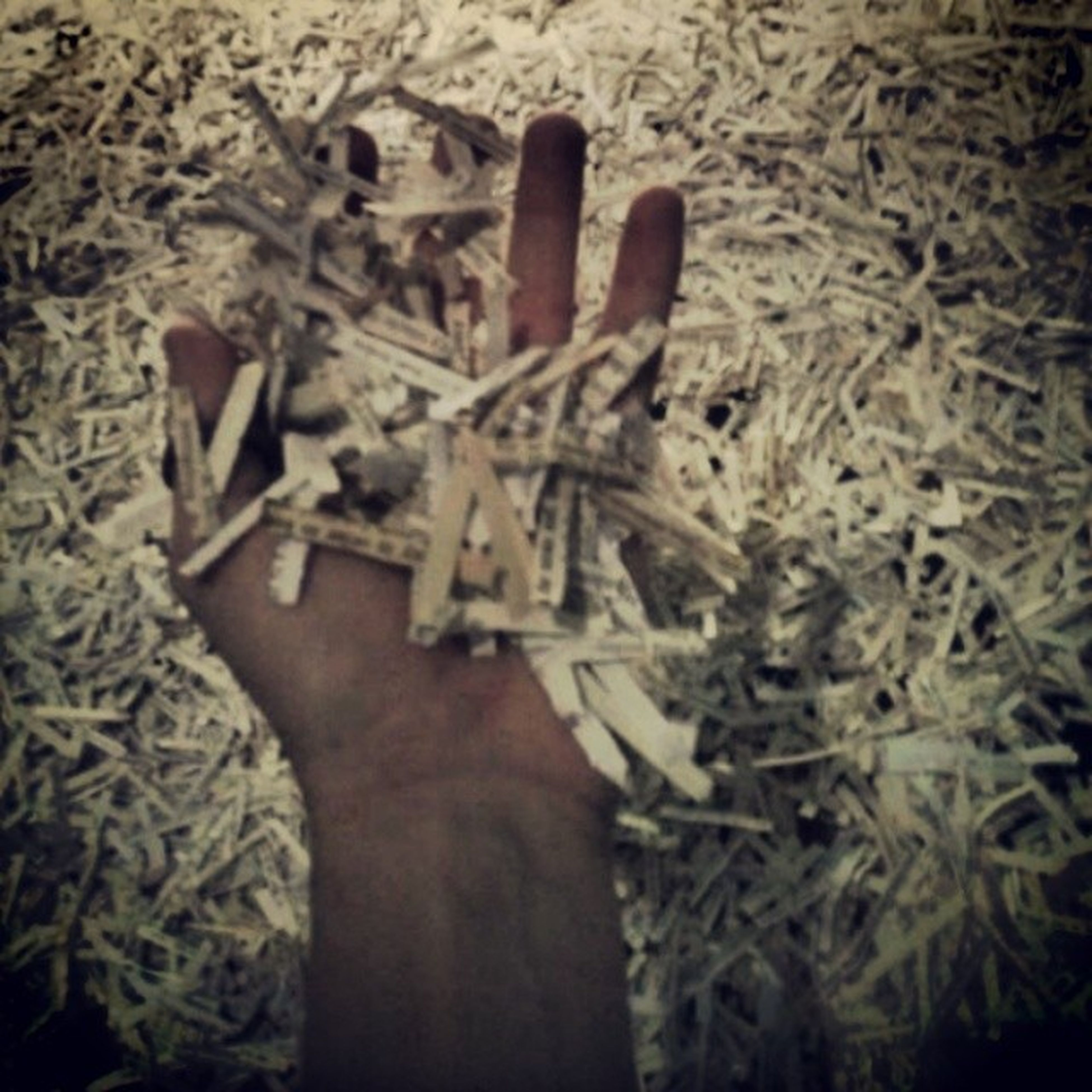 high angle view, person, close-up, part of, indoors, holding, unrecognizable person, cropped, still life, day, dry, leaf, paper, art and craft, human finger, death