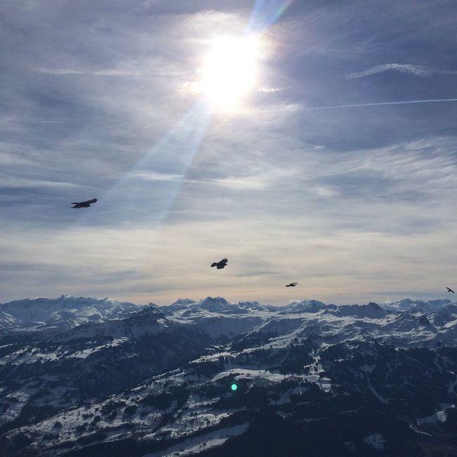 Magical panorama Walking Around Wandering Around Swiss alps Magical
