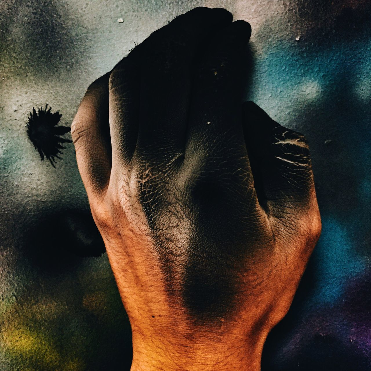 human hand, one person, indoors, real people, human body part, men, close-up, one animal, day, mammal, one man only, people