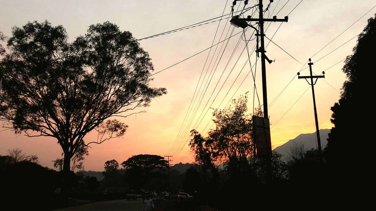 When the tree is shaped like heart😊 u gotta click it😊😊 Sunset Tree Power Line  Electricity  Sky Nature Outdoors Cable Dramatic Sky