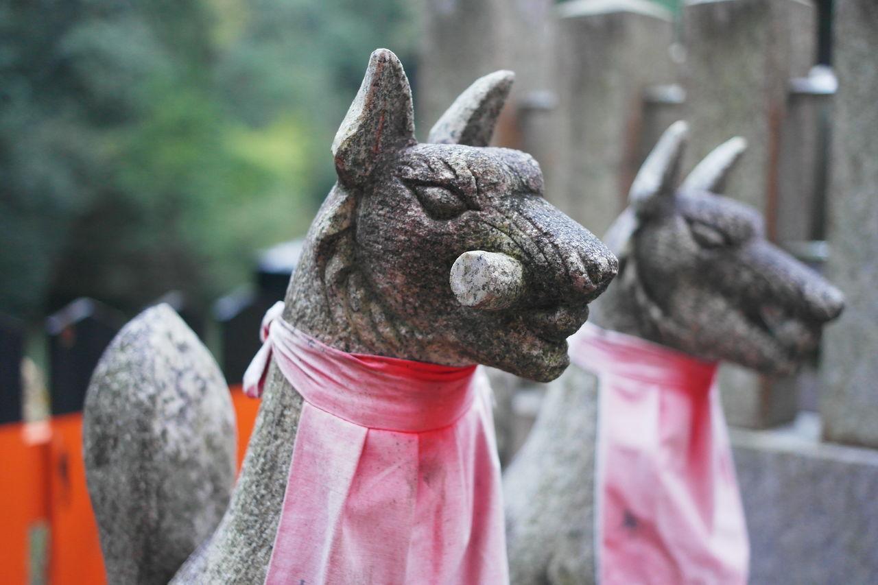 Beautiful stock photos of fuchs, Animal Representation, Art, Art And Craft, Close-Up
