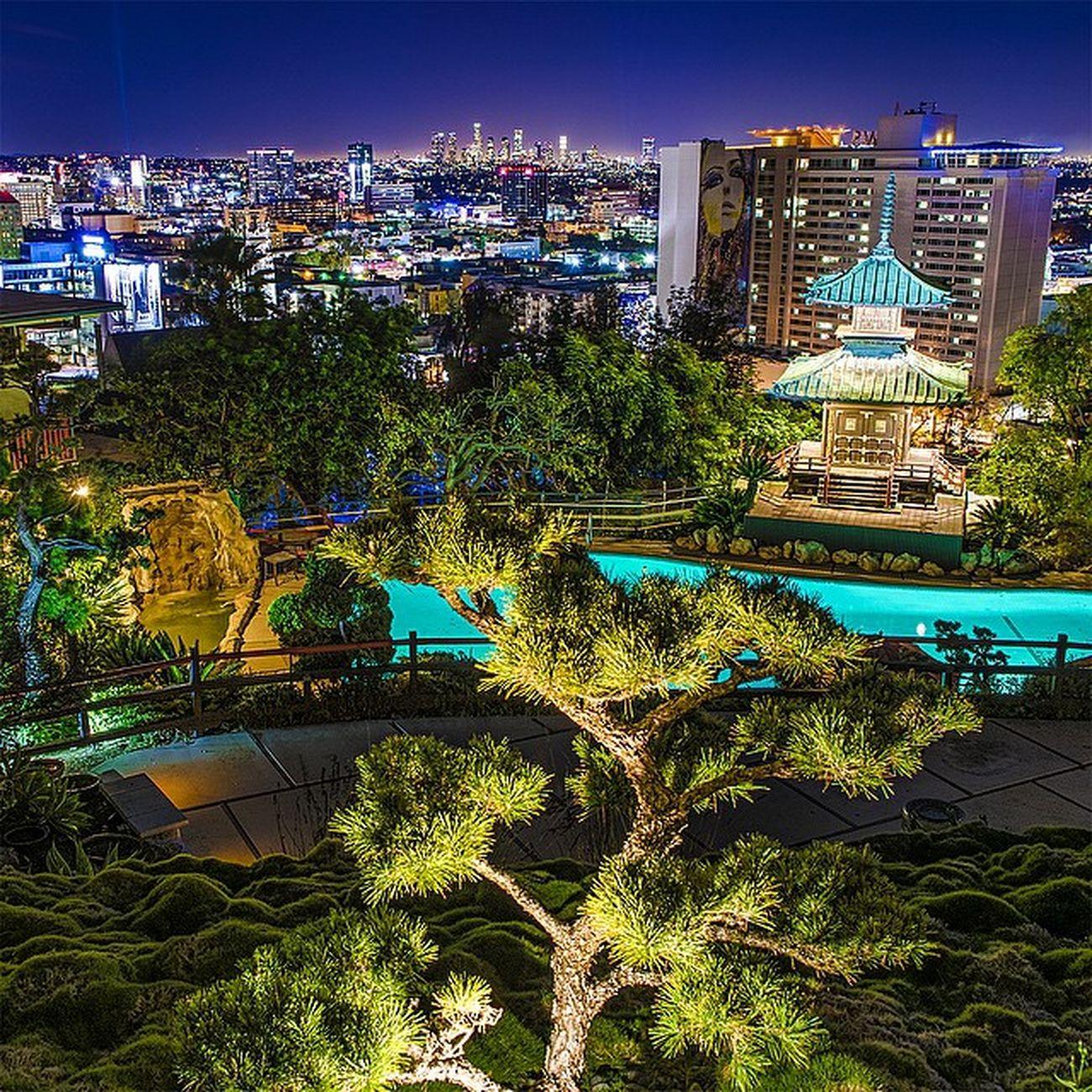 Cities At Night Long Exposures Long Exposure Los Angeles, California TurnUpTheBrightness Los Angeles Life Losangeles_la DiscoverLA Yamashirola Yamashiro