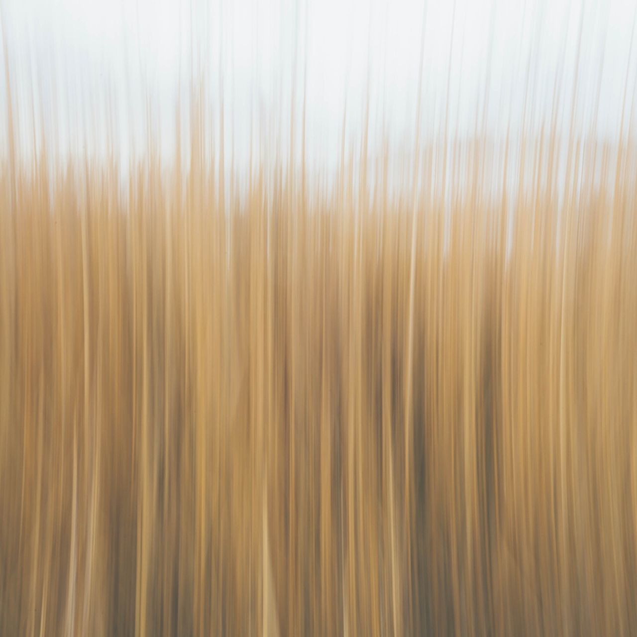 Shutter drag // beach Backgrounds Shutter Full Frame Shutter Speed Close-up Nature Contrast Color Peaceful Textured  Abstract Feelings Sky Photooftheday Minimalism Nature Photography Pattern Technology Perspective Creativity Creative