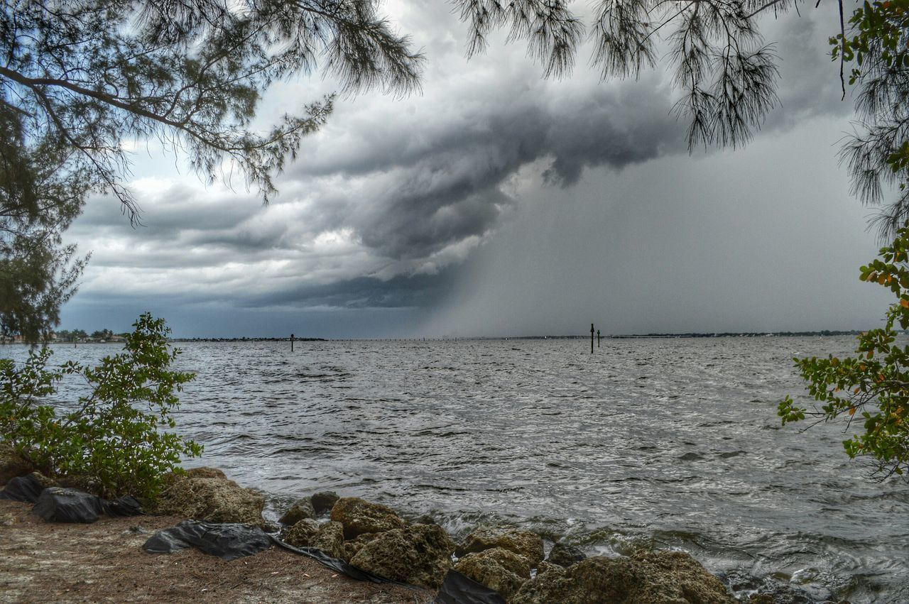 Landscape_Collection United States Florida Water Reflections Trees Stormy Weather Coconut Trees Clouds And Sky Sky