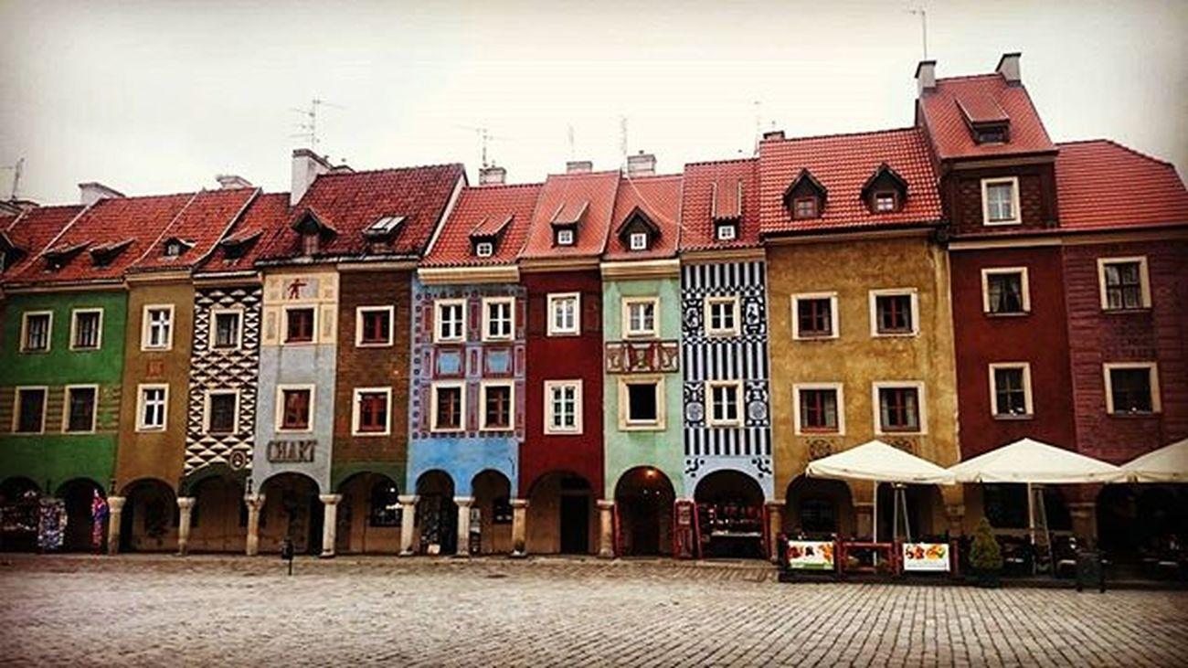Tutaj nawet jesień jest bardziej kolorowa niż w rzeczywistości! 🍃🍂🍁Autumn Poznań City Colorful Architecture Ideal Perfect Cold Poland Beautifulview EwaJoannaMatczyńskaPhotography