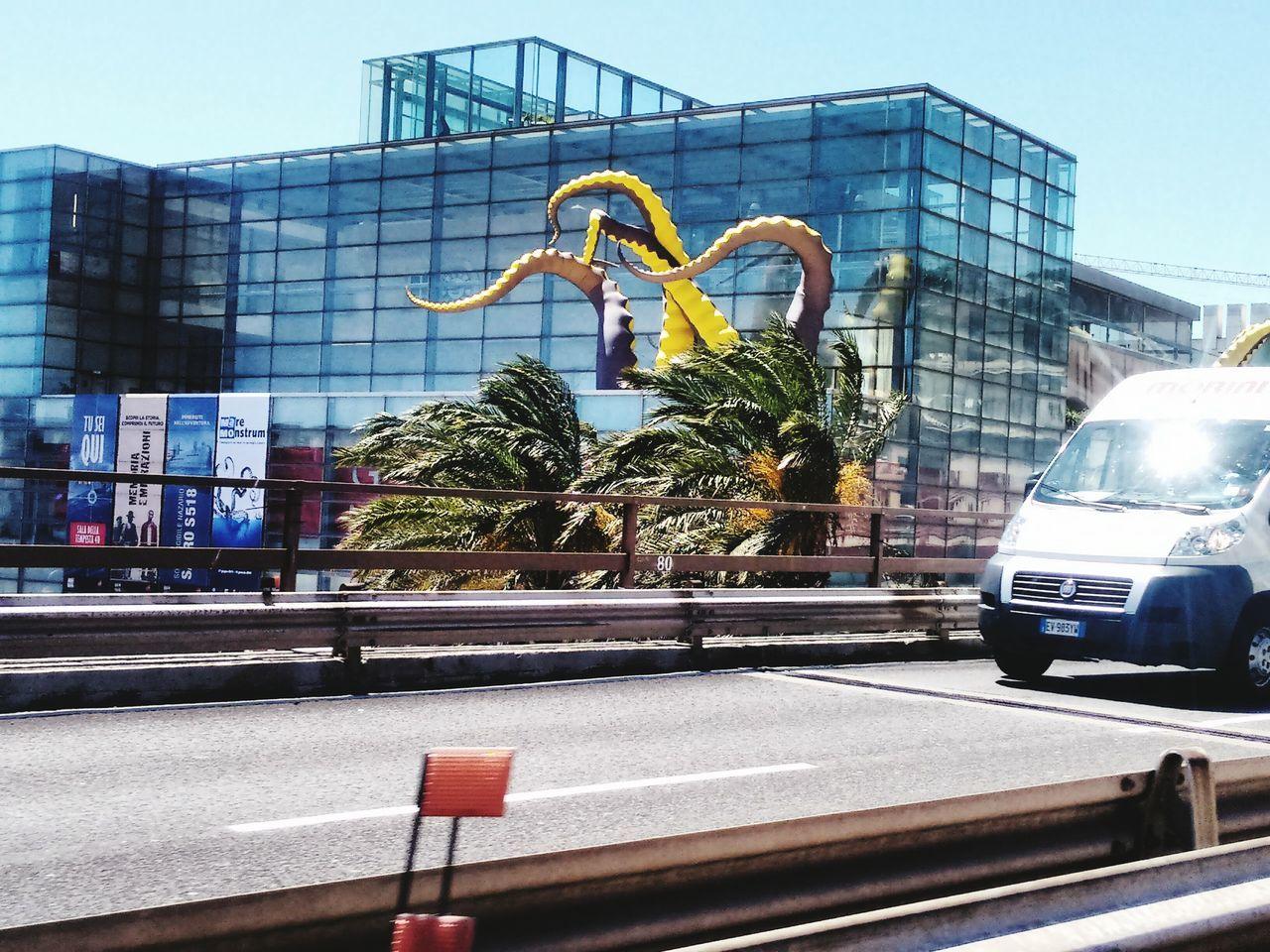 Sopraelevata Road Octopus Piovra Galata Museo Del Mare