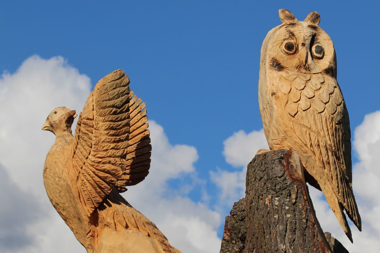 Beauty In Nature Blue Blue Skys Cloud Cloud - Sky Clouds Day High Section Low Angle View Nature No People Outdoors Scenics Sky Tranquility Tree Trunk Carving Wood Wood Carvings Wooden Birds Wooden Owl