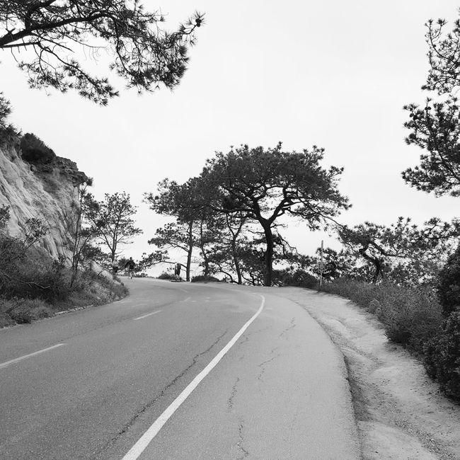 Torrey Pines State National Reserve, San Diego, California Enjoying Life Hanging Out Relaxing