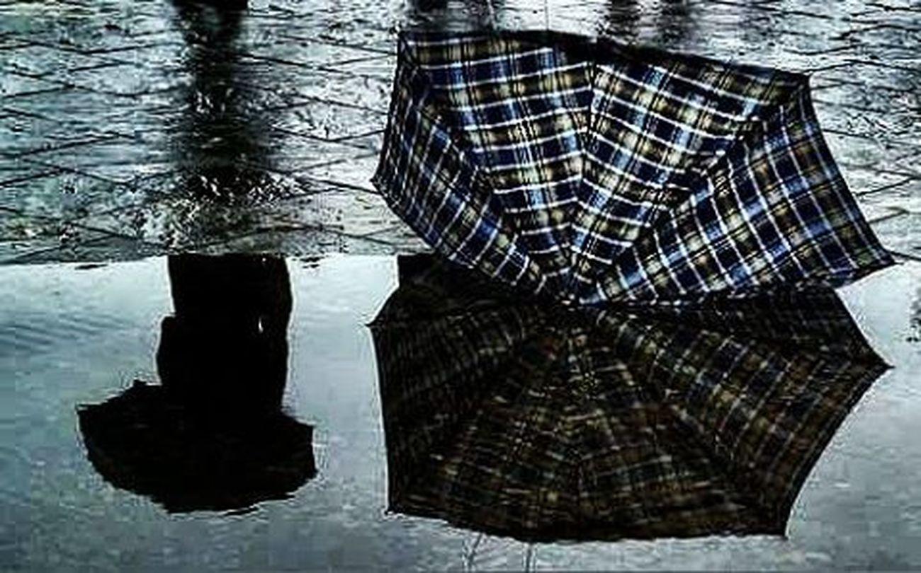 Nelle lunghe Giornate di Pioggia , anche gli istanti sembrano stanchi, scorrono con lentezza quasi a sussurrare al mondo la loro tristezza. Piove Pioggia Ilritmodellapioggia Temporale Cielogrigio Ombrello Ombrellorottoacentrostrada Ombrellorotto Torino Centro Ig_torino Istatorino Turin Torinodigitale Igerstorino Ig_turin Vivotorino Vivoatorino Volgotorino Turin_city To  Amocamminaresottolapioggia Ilcielosutorino subsonica strade seitulamiacittà amolapioggia andandoalavoro