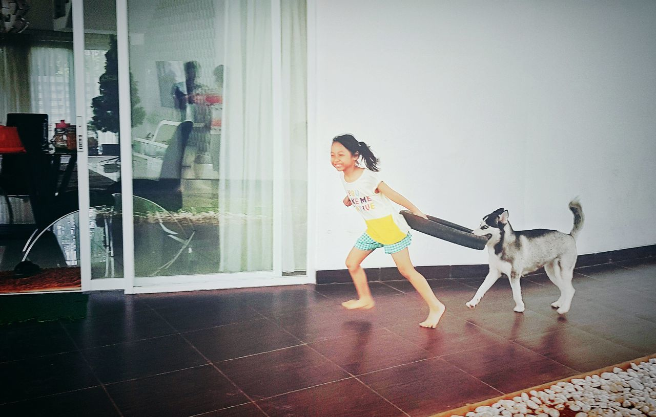 Liitle girl playing with her dog at home One Animal Happiness Fun Pets Dog Animal Themes One Person Enjoyment Animal People Full Length Friendship Young Adult Girl Power Night Adventure Indoors  Adult Adults Only Kids Husky Tyre