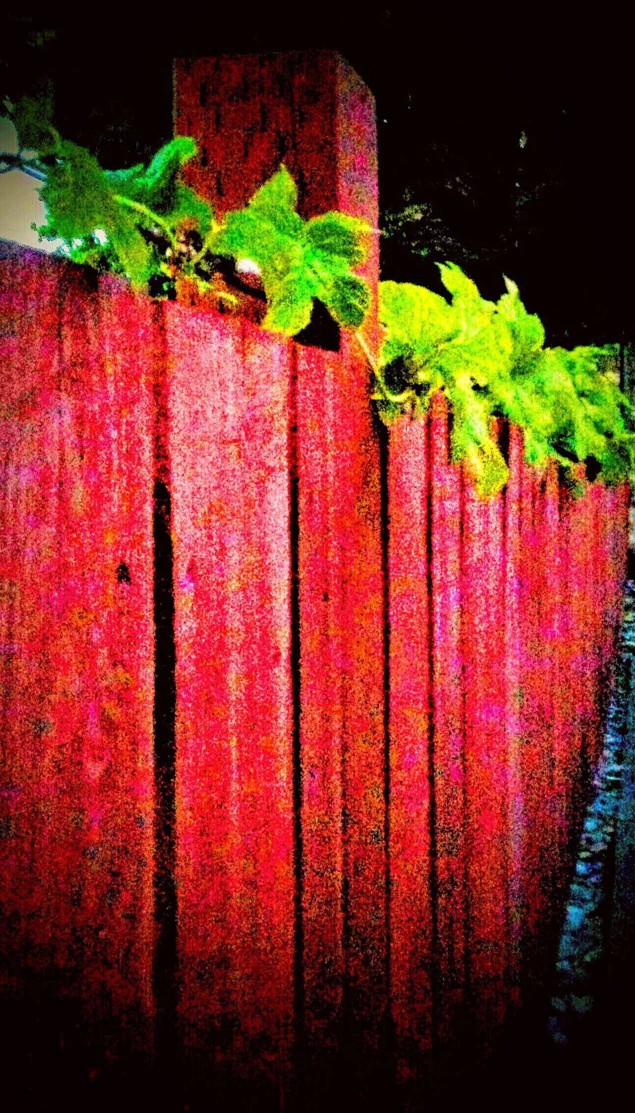 Vines On Fence Vines And Leaf Red Fence Beauty In Ordinary Things Taking Photos Check This Out Relaxing Hanging Out Enjoying Life Whatever You Want World Photography Day 43 Golden Moments Lost In The Moment Oregonphotographer EyeEm Nature Lover EyeEm Gallery EyeEm Best Shots Angles What It Means My Point Of View Picture Of The Day Fence View