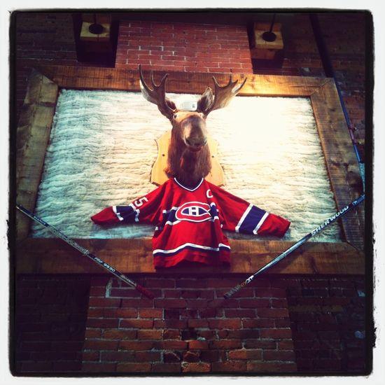 Quebec Hockey <3 @Sherbrooke Hockey Habs Practice Jersey Elk