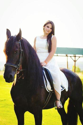 Friesian Horse Photoshooting Loveit Besthorse Loveher Whitedress Lovely