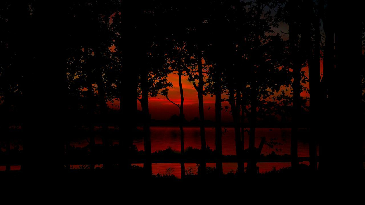 Trees Tree Silhouettes Sunset Breathing Space