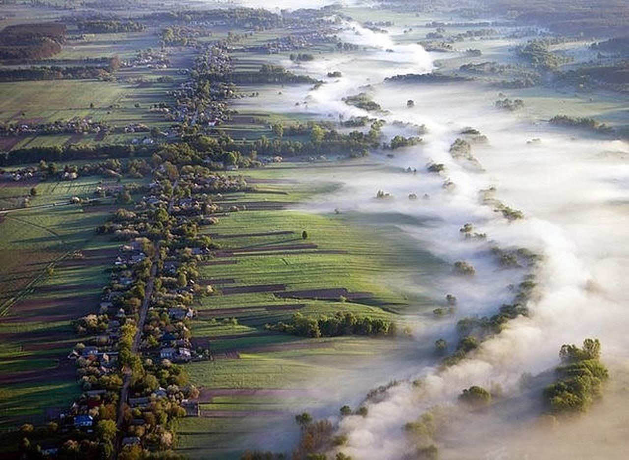 landscape, tree, aerial view, field, nature, high angle view, fog, outdoors, agriculture, scenics, beauty in nature, day, no people, rural scene, smog, dawn, sky