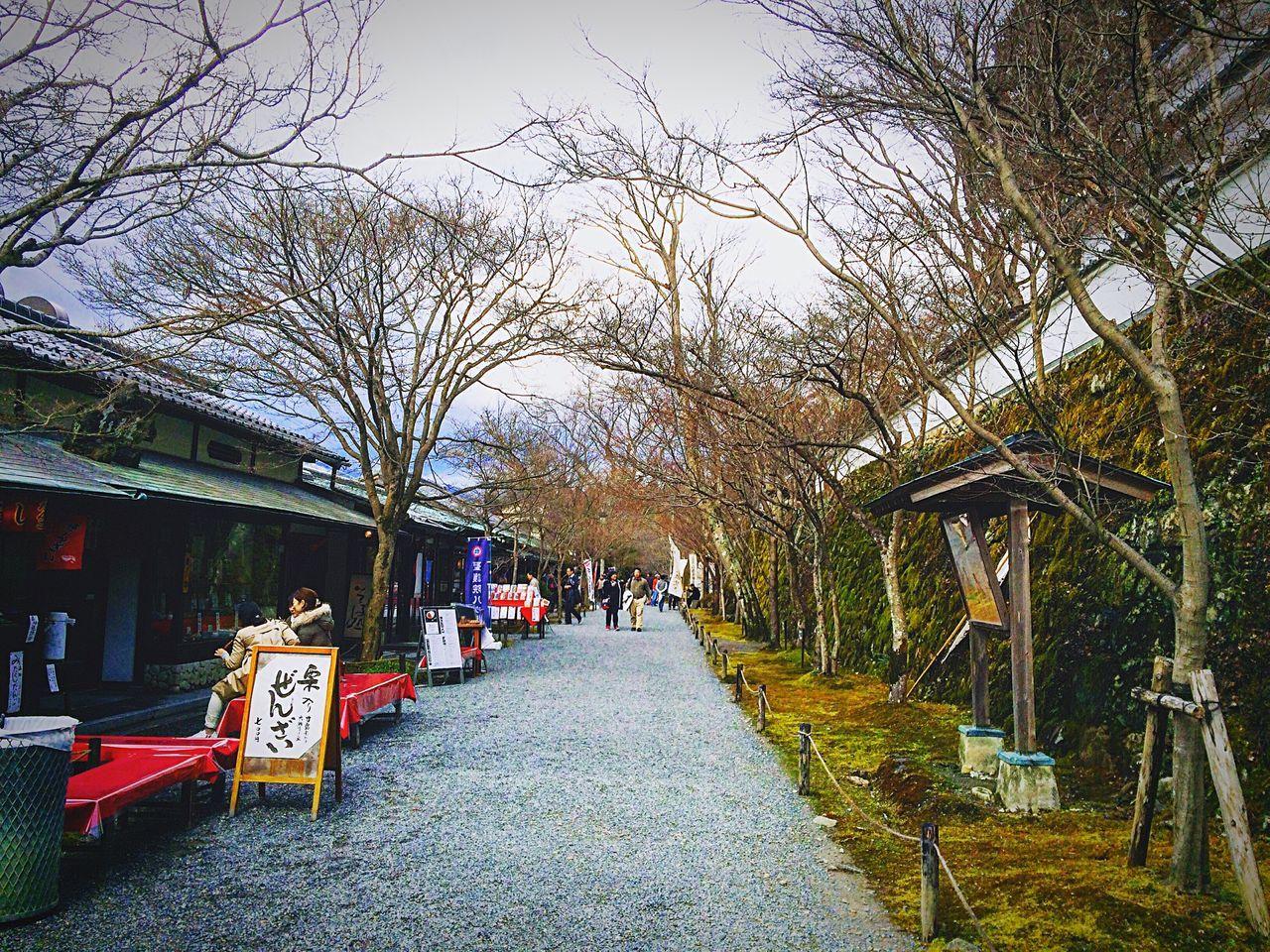 大原 三千院参道 京都 Kyoto Enjoying Life Relaxing