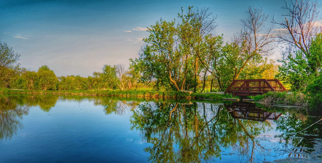 Water Reflections Springcolors Enjoying Life Outdoor Photography Reflection Learn & Shoot: Simplicity Nature Photography Flowers, Nature And Beauty Peace And Quiet Trees
