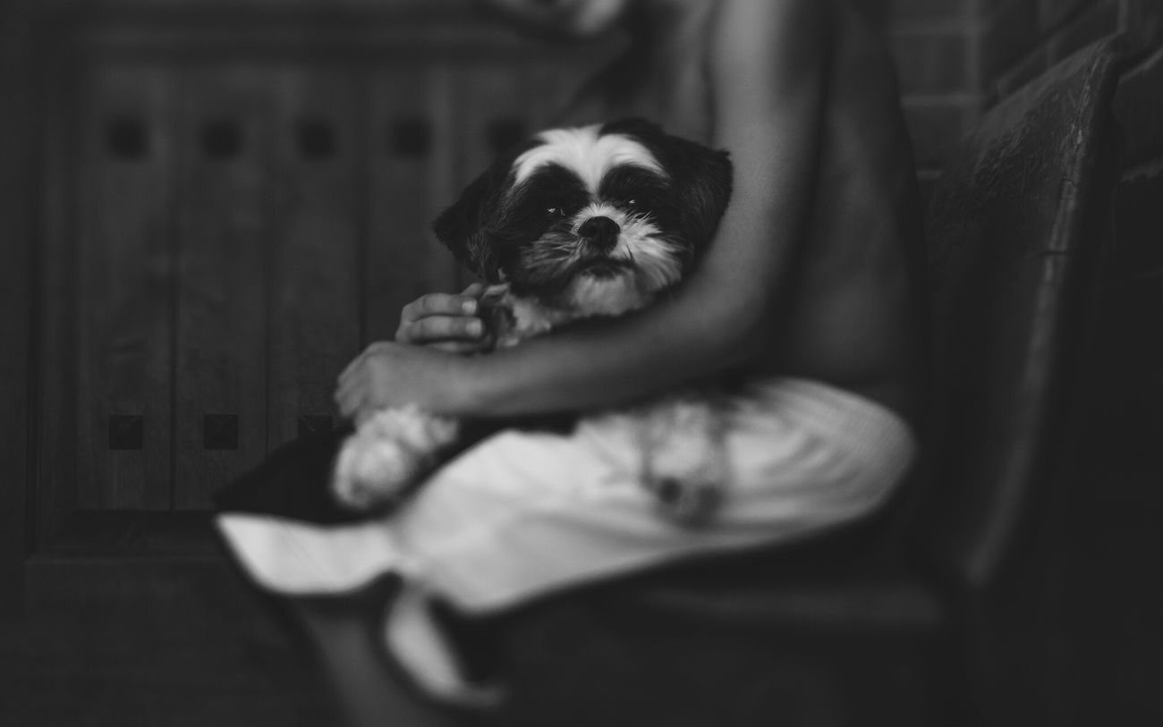 Dog Boy And Dog Childhood Love Blackandwhite Lensbaby  One Boy Hands Sweet Loveable