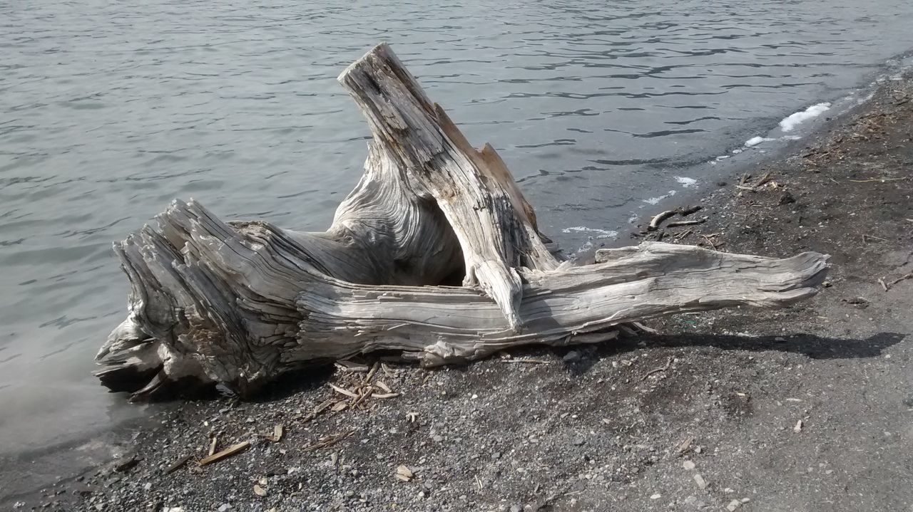 Water Beach Sand No People Drift Wood On Beach Outdoors Nature Day Wood