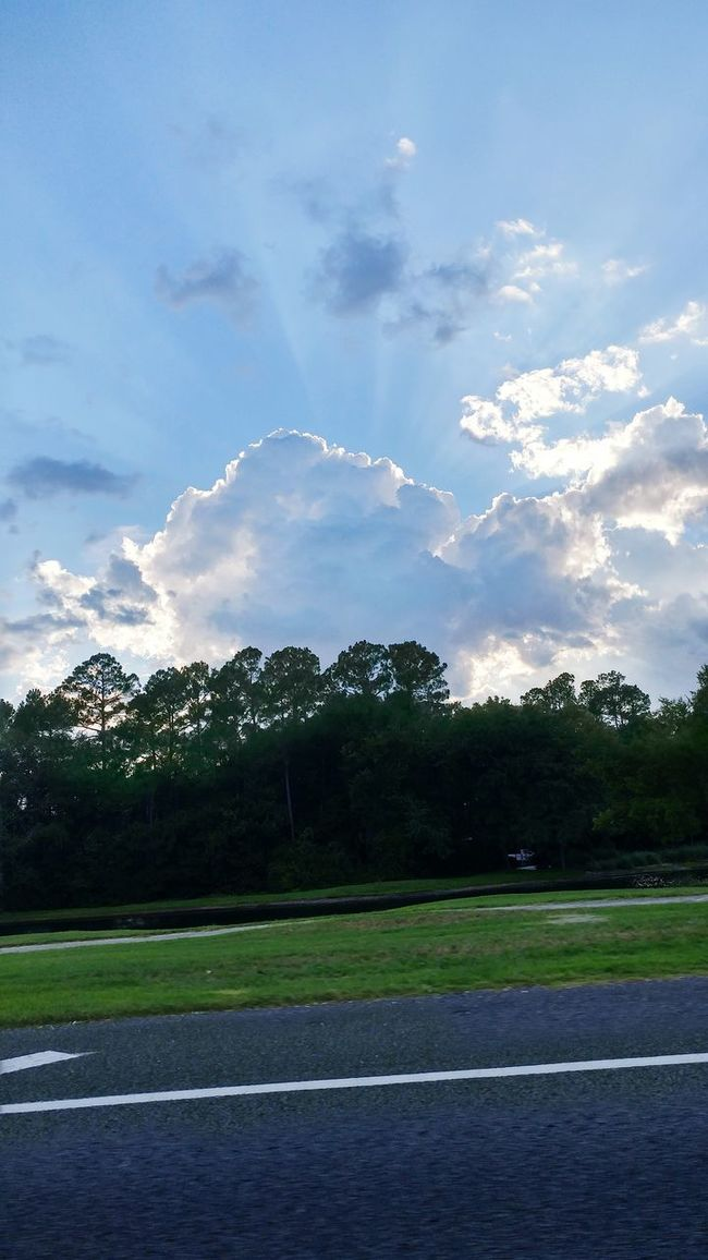 CarRides Taking Photos Photography Florida Tree Line Clouds And Sky Street