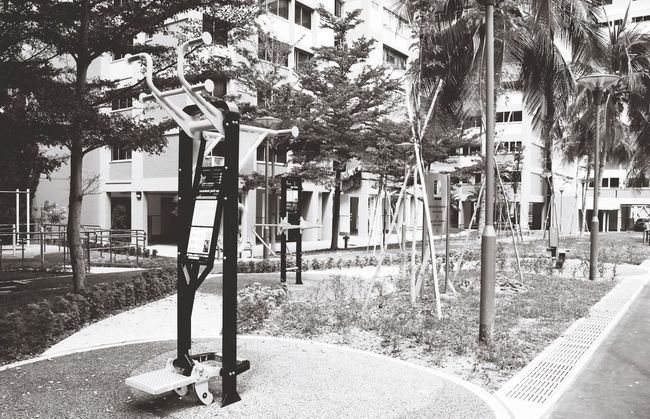 Monochrome Photography Tree Built Structure Architecture Building Exterior City Eyeem Singapore Playing Park - Man Made Space Park Outdoors Footpath Day City Life Town -playground series