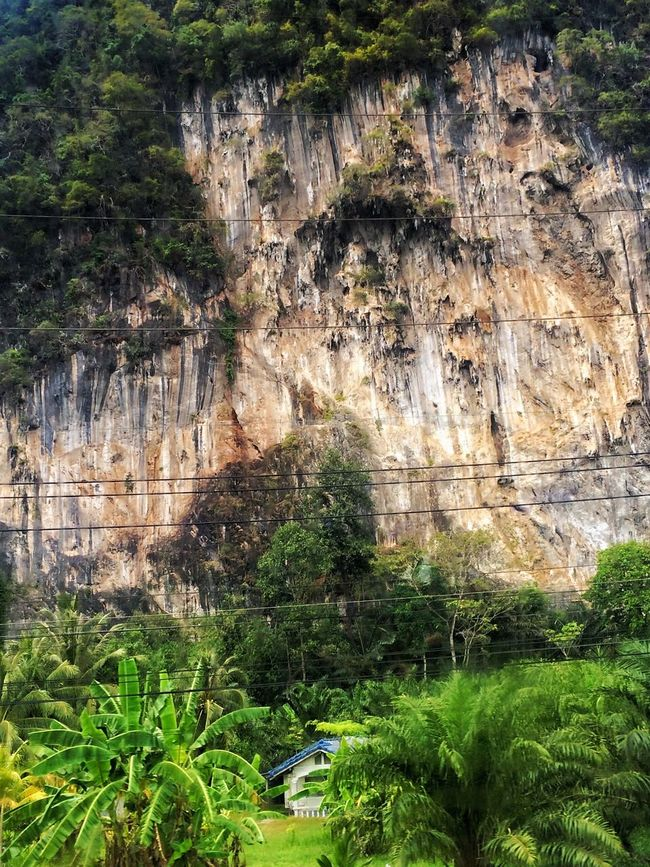 I would be afraid to live in a house under such a great rock 🙈🙈 House Houses Rock Rocks Rock Formation Mountains Mountain Trees Tree Wires Tree_collection  Nature Living Dangerously Steep Nature_collection Nature Photography Nature On Your Doorstep EyeEm Nature Lover Beautiful Nature Landscape Landscape_Collection Landscape_photography Landscapes Landscape_photography Spotted In Thailand