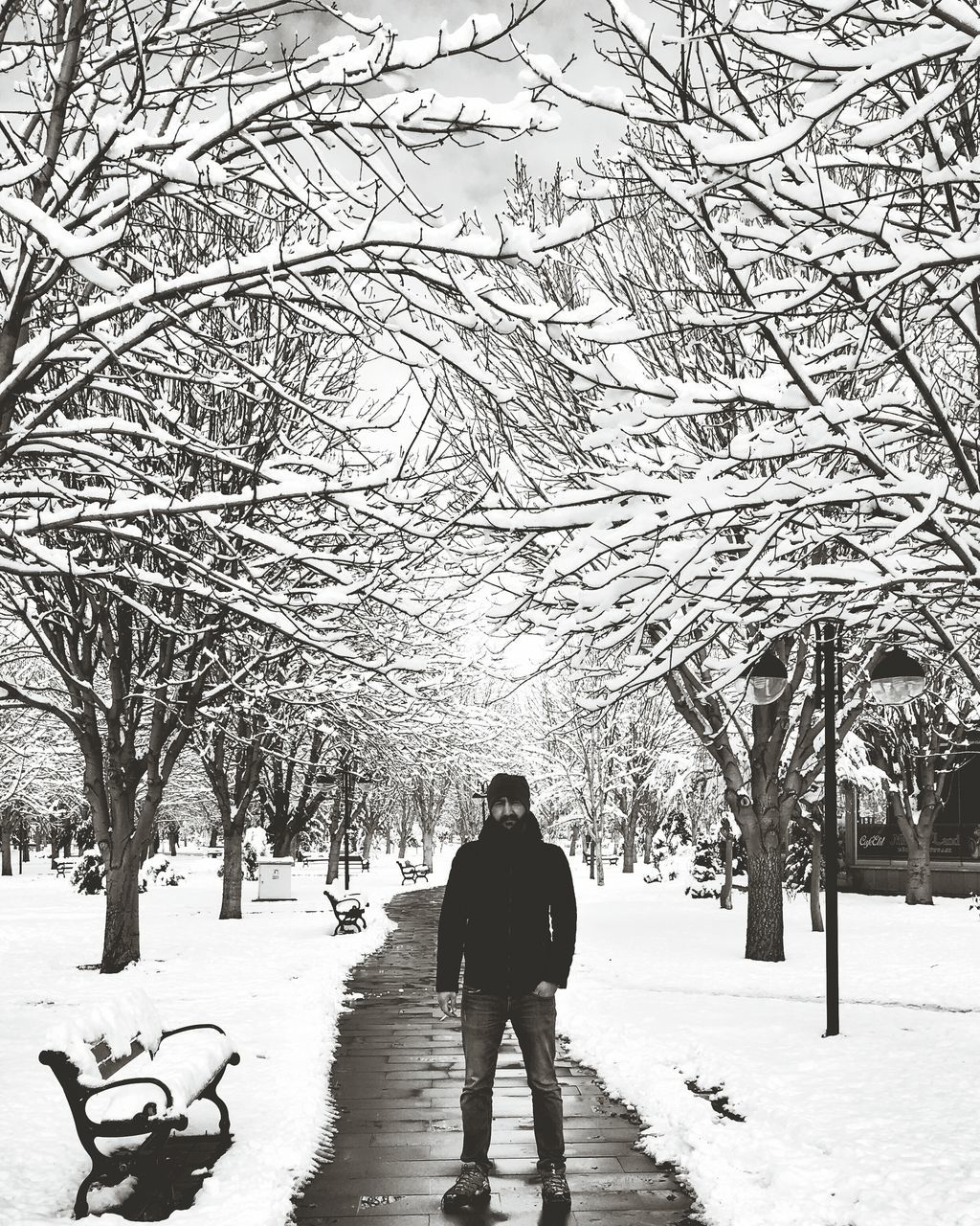 Full Length Of Man Standing Amidst Snow Covered Bare Trees On Footpath At Park