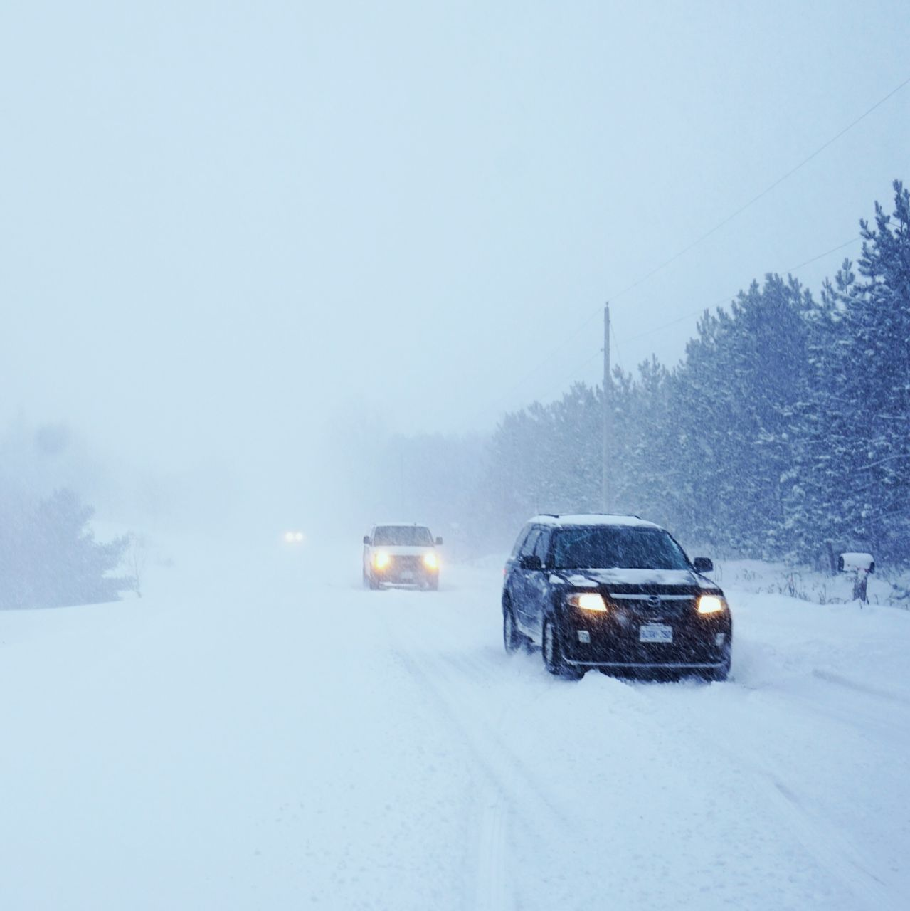 cold temperature, winter, snow, weather, car, transportation, mode of transport, land vehicle, road, snowing, nature, frozen, outdoors, no people, day, beauty in nature, tree, sky