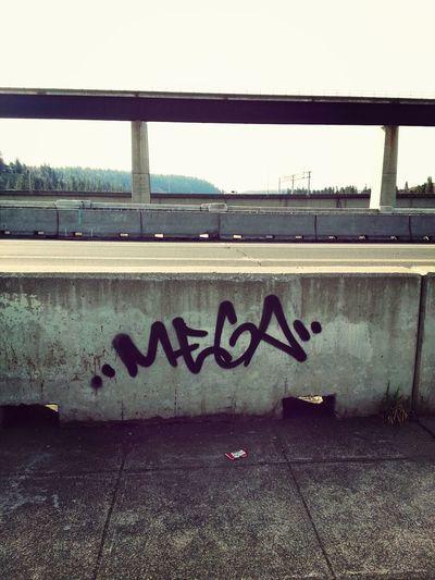 high bridge. Spokane Style Street Art