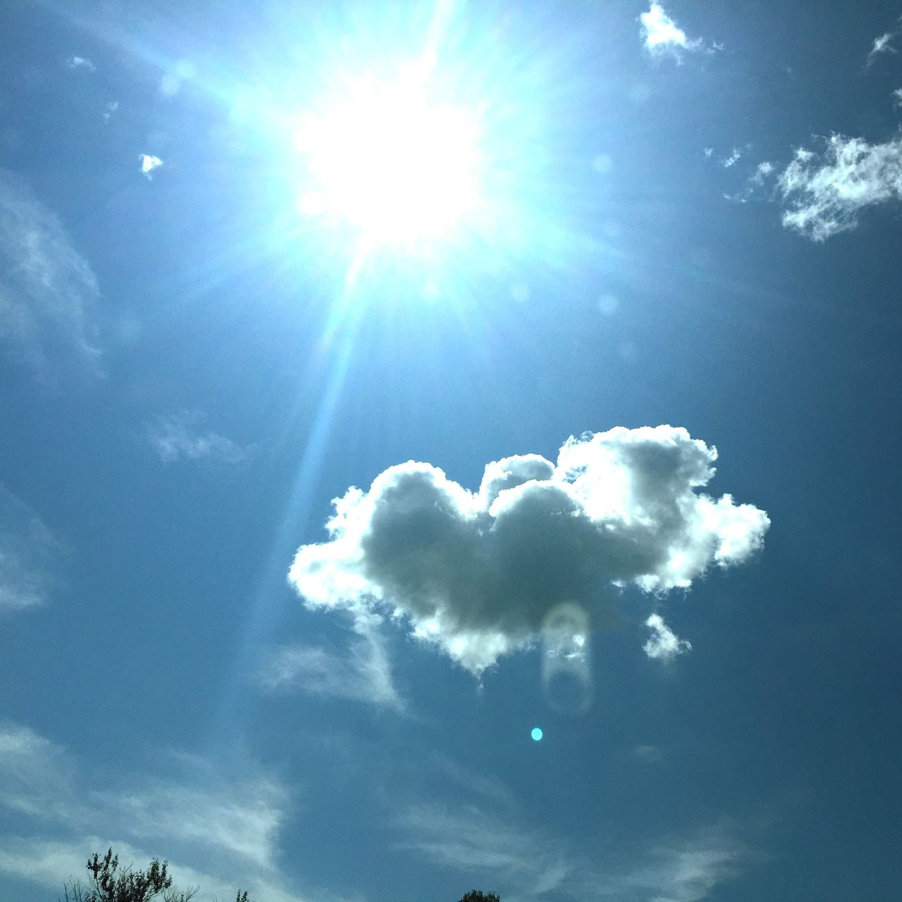 Bright sunny...🌞