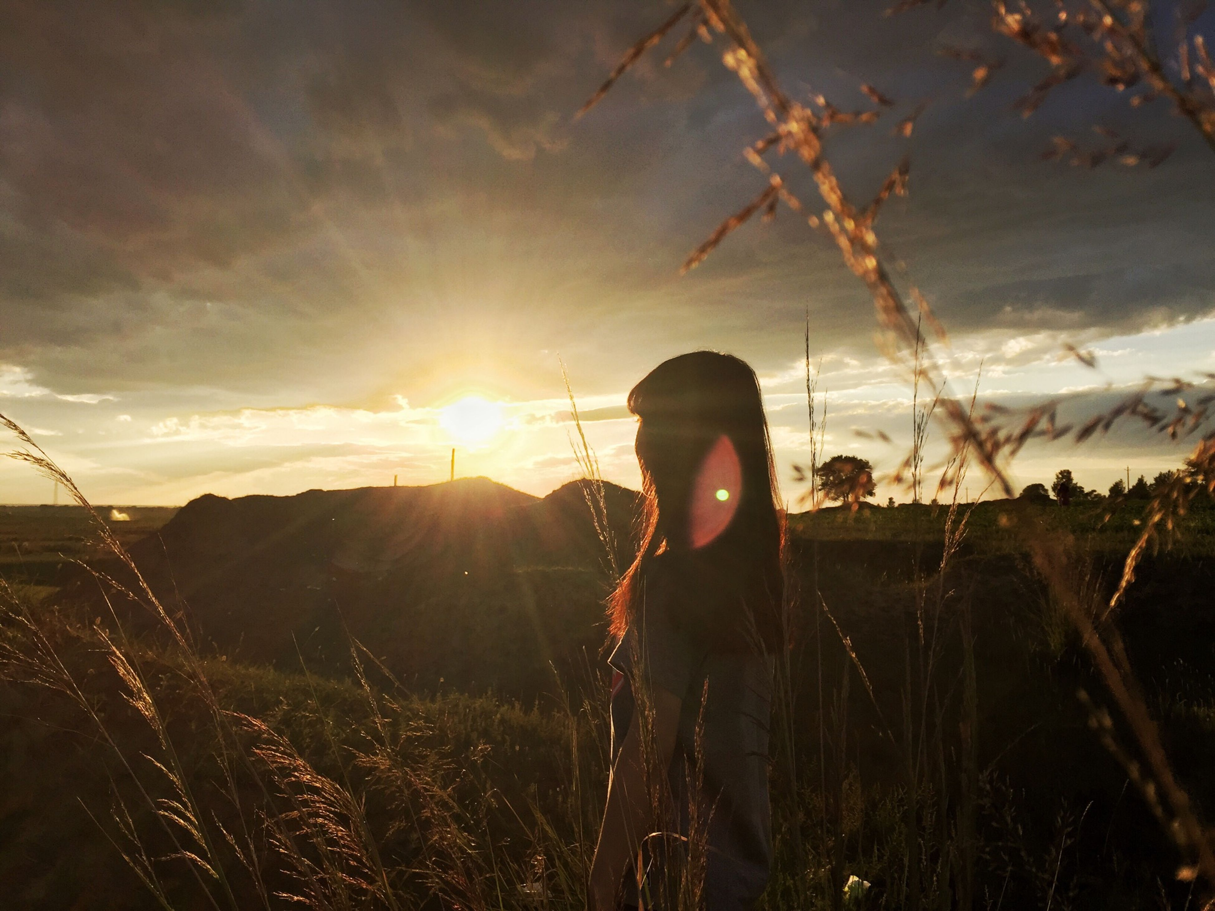 sky, lifestyles, leisure activity, sunset, sun, nature, sunlight, plant, standing, tranquility, rear view, beauty in nature, cloud - sky, person, outdoors, growth, field, sunbeam